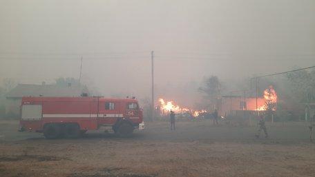 Кількість жертв лісових пожеж на Луганщині зросла до 11 людей