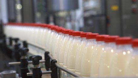 На Львівщині почали будувати перший в Україні кооперативний молокозавод