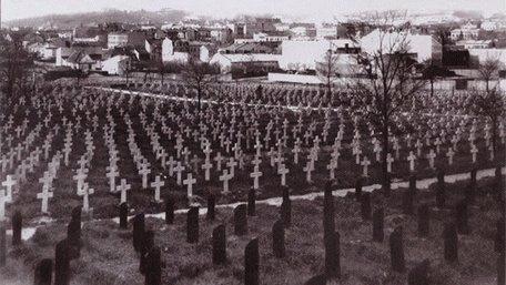 День пам'яті полеглих 11 листопада