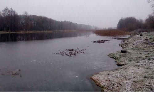 На Львівщині три ставки передали в оренду на 15 років