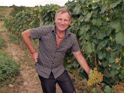 Олег Скрипка вирощує виноград на Закарпатті