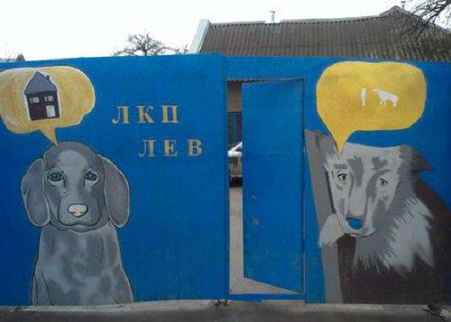 Наступного року у Львові відкриють крематорій для тварин. З міського бюджету на це виділять близько мільйона гривень