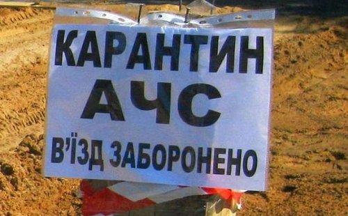 Українським фермерам відшкодовуватимуть збитки за вилучених під час карантину тварин. Йдеться зокрема про вилучення під час заходів по боротьбі з африканською чумою свиней