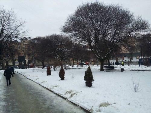 Депутати ЛМР розширили майбутній паркінг на площі Петрушевича у Львові