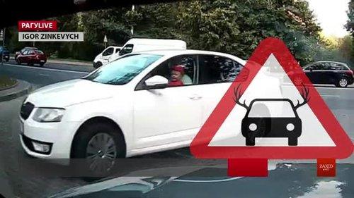 Паркування по-львівськи. Випуск за 23 серпня. Соціально-саркастичний проект ZAXID.NET
