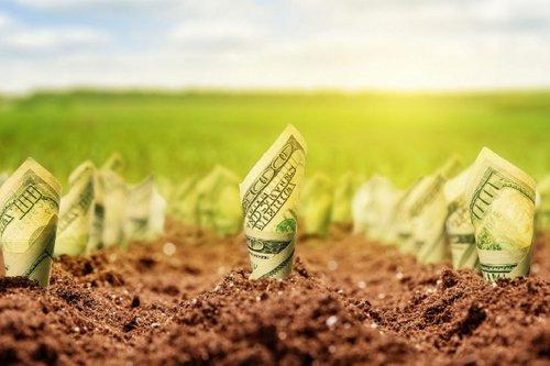 Продаж української землі іноземцям відкладуть до 2024 року. Винятком будуть іноземці, які вже більше 3-х років працюють на українській землі та сплачують податки в український бюджет