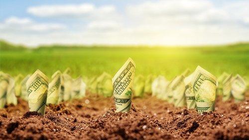 Українці зможуть взяти кредит на купівлю землі під 3-5% річних