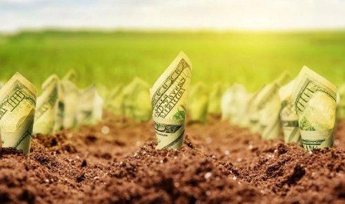 Мінекономіки обіцяє українцям кредити на купівлю землі зі ставкою 3-5%. Також у держбюджеті закладено 240 млн грн. на часткове гарантування за кредитами на купівлю землі