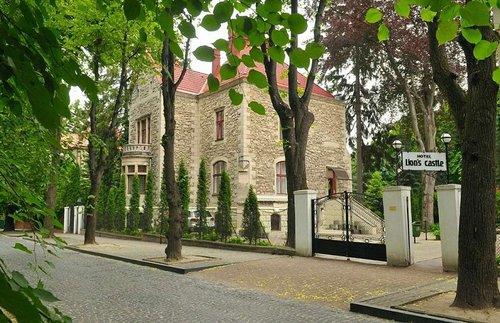 Львівська облрада дозволила братам Керницьким викупити готель «Замок Лева». Дві історичні вілли продадуть без аукціону