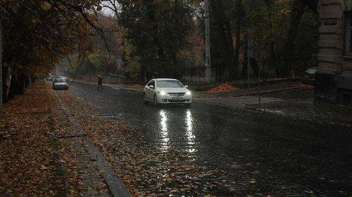 Синоптики прогнозують перші приморозки на Львівщині