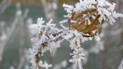 В Україну йде похолодання, вночі до 14° морозу