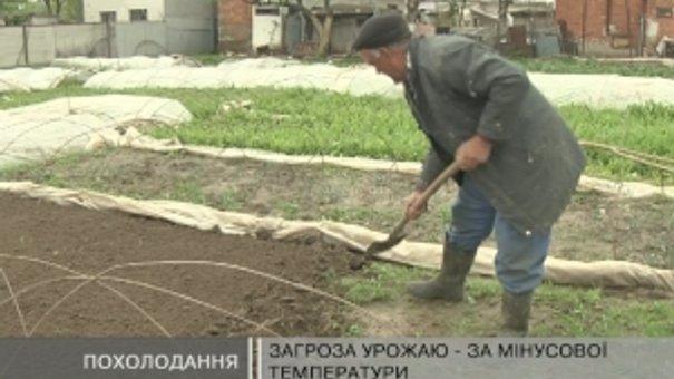 Температура повітря у Львові із плюс 20 за одну ніч впала до 5