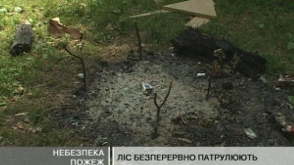 На Львівщині оголосили найвищий рівень пожежної небезпеки