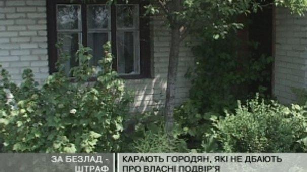 У Львові карають городян, які не дбають про власні подвір'я
