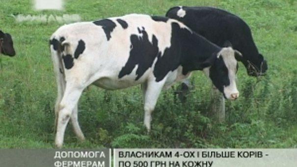 Фермерам на Львівщині обіцяють фінансову допомогу