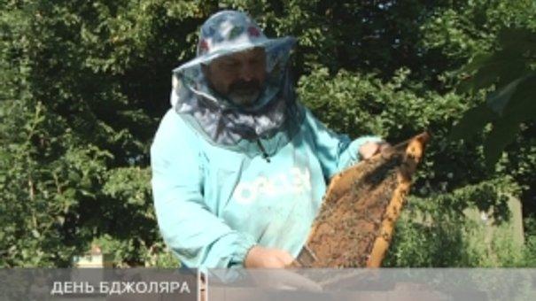 Бджоли потребують захисту від людей, а пасічники допомоги від держави