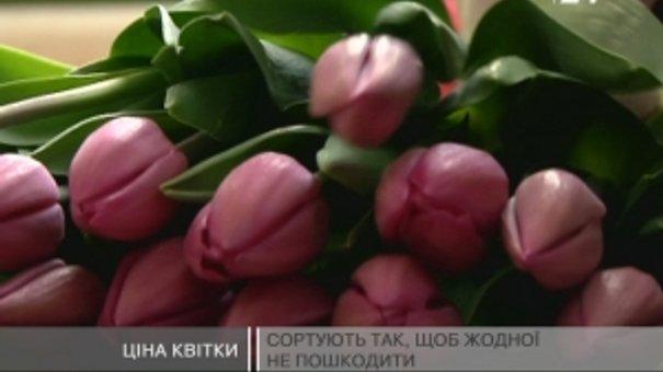 У теплицях троянди вирощують увесь рік