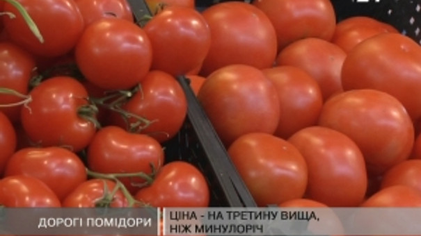 Ціна на помідори на третину вища, ніж минулоріч