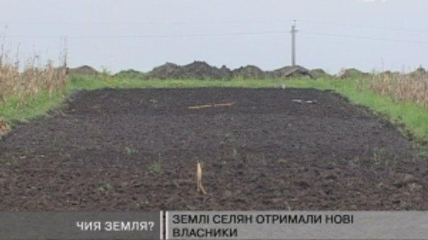 У Сокільниках ділять 20 гектарів