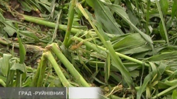 Буревій пошкодив 15 сіл Львівщини