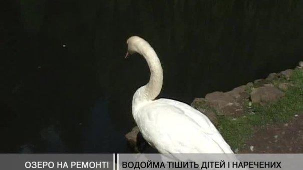 У Стрийському парку чиститимуть озеро