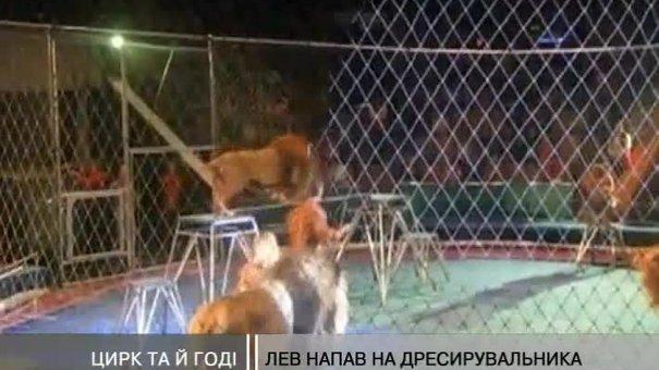 У Львівському цирку знову готують шоу із небезпечними левами