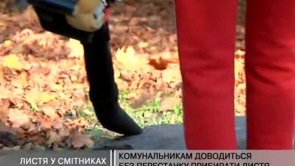 Комунальники змушені без перестанку прибирати листя - у місті пора листопаду