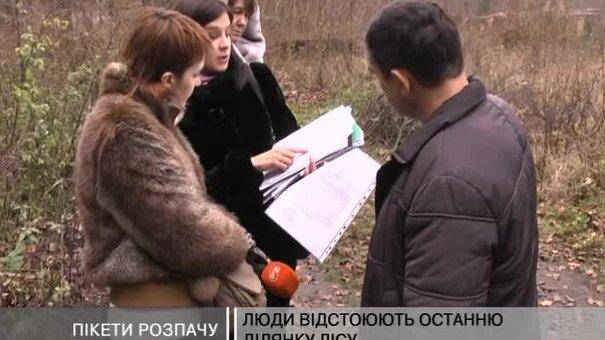 Мешканці Брюховичів відстоюють останню ділянку лісу