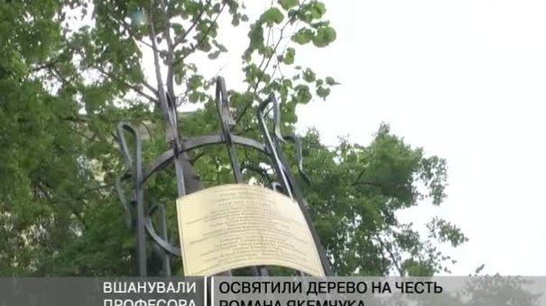 На честь Романа Якемчука освятили дерево