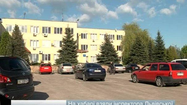 На хабарі взяли інспектора Львівської митниці