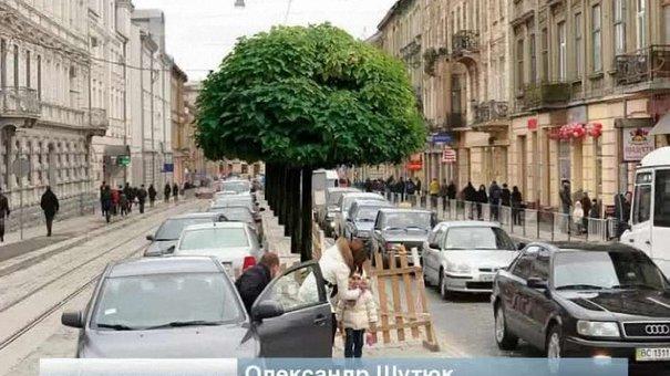Львів'яни почали озеленювати вулицю Городоцьку
