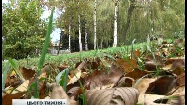 Головні новини Львова за 20.10