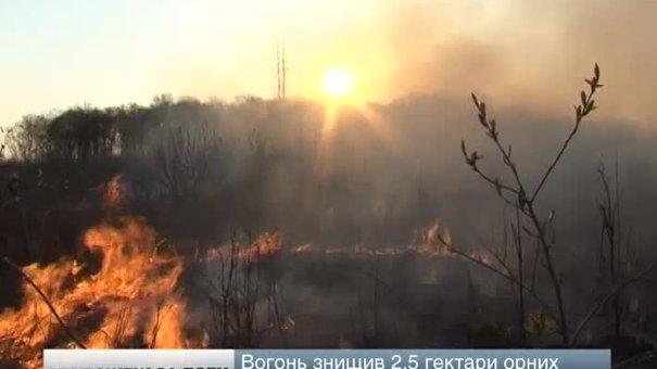На Львівщині сталося сім пожеж за добу: горів торф і трава