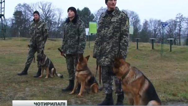 За два місяці кінологи Львівщини підготували 70 собак у зону АТО