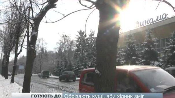 Львівські парки готують до зими