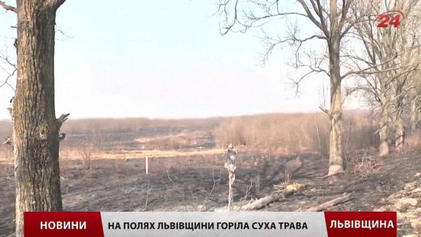 За паління сухостою на Львівщині оштрафували 15 людей за два місяці