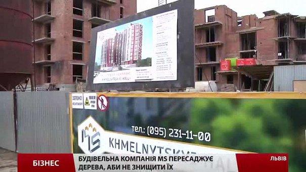 Будівельна компанія MS пересаджує дерева, аби не знищити їх під час будівництва