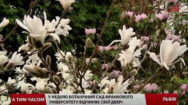 Ботанічний сад університету Франка у Львові відчиняє двері