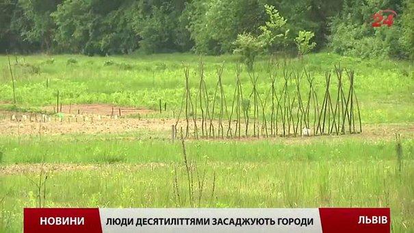 Львівські депутати знову голосуватимуть за ділянку під житлове будівництво на Лукашевича