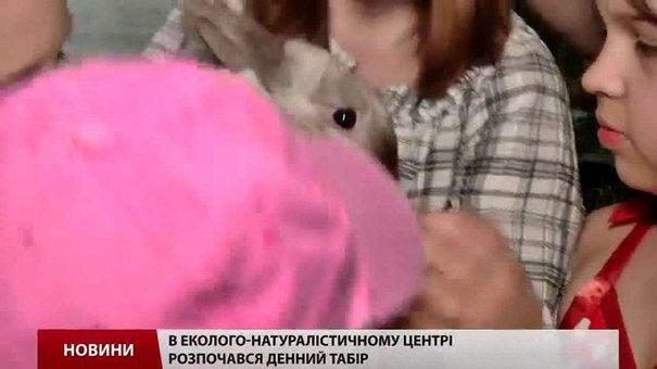 У літніх таборах і санаторіях планують оздоровити понад 126 тис. дітей із Львівщини
