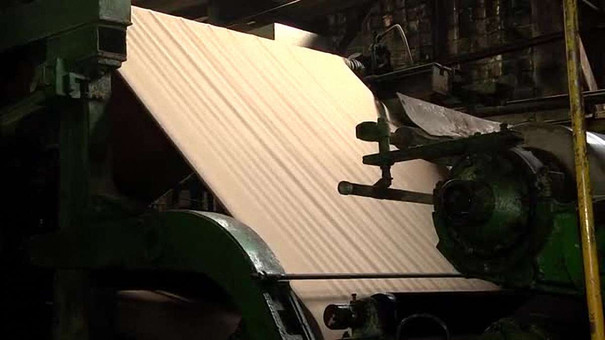 Львівські виробники картону експортують продукцію в Польщу, Чехію та Бельгію