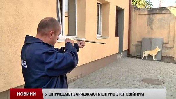 Працівники ЛКП «Лев» вчаться відловлювати безпритульних собак за допомогою шприцеметів