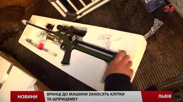 У Львові за допомогою шприцемета за тиждень зловили п'ять собак