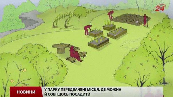 Львів'ян запрошують допомогти прибрати ділянку під виноградники