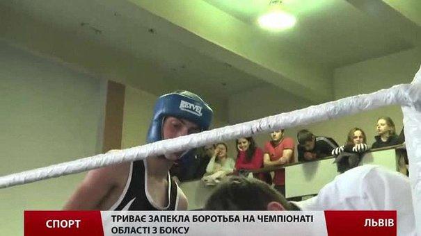 У Львові в розпалі Чемпіонат області з боксу серед юніорів