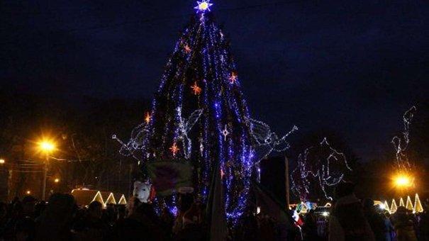 14 грудня до Львова привезуть головну ялинку міста