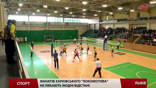 Львівські «Кажани» не пройшли випробування боєм з лідером чемпіонату України