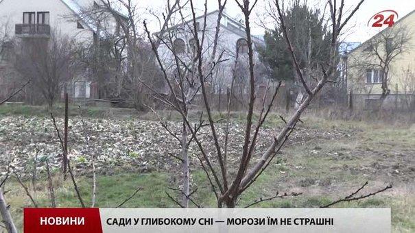 На Львівщину насуваються холоди
