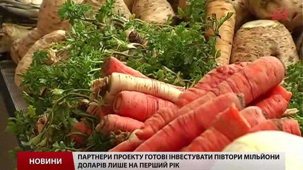 Фермерів Львівщини заохочуватимуть вирощувати малину та моркву