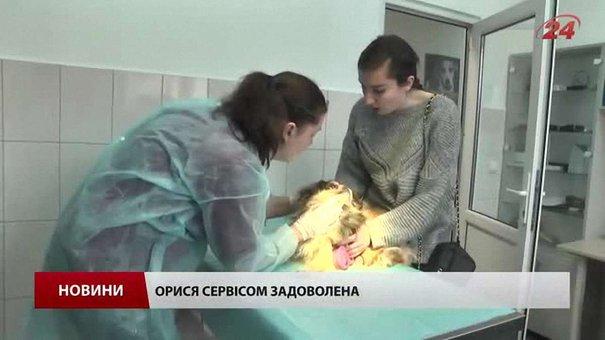 ЛКП «Лев» заробляє на домашніх тваринах для допомоги безпритульним